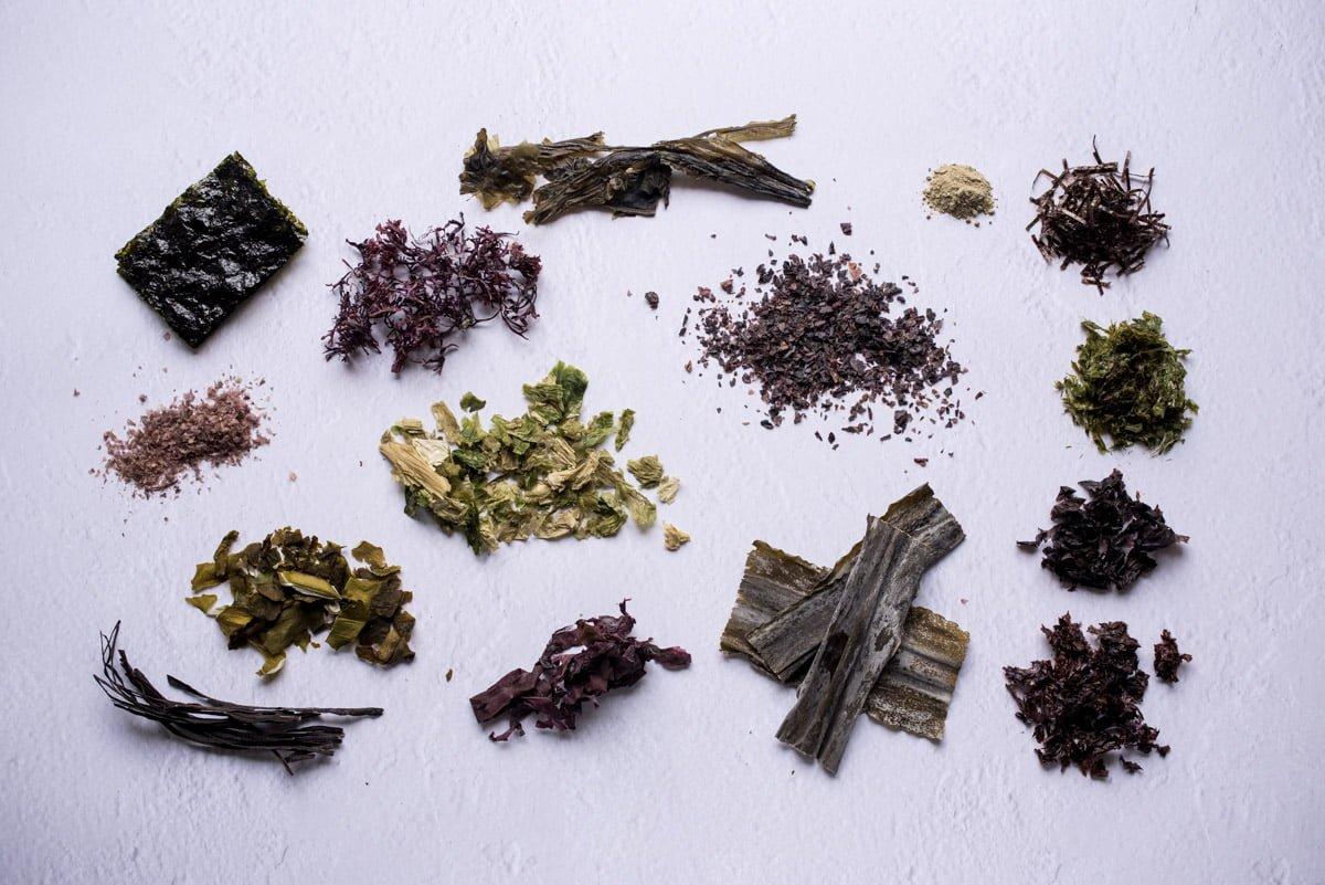 Seaweed around the world