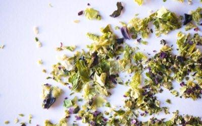 Iron, Magnesium and Vitamin B12 in Seaweed